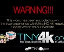 Hd Sex Video Downloading
