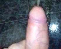 Horse Ke Sathbsex Video