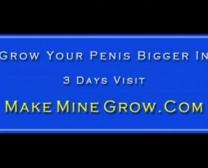 Kojak Sex Videos Xnxx
