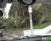हाथी घोड़ा कुत्ता और लड़की का सेक्सी वीडियो