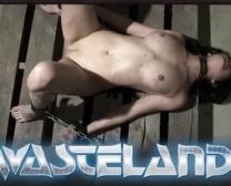 Sex Video Nabalik Janwar